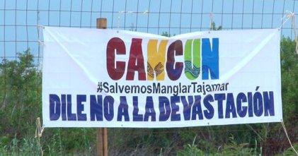 Megaproyecto inmobiliario arrasa con la flora y fauna del manglar en Cancún