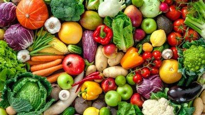 Los transgénicos y la necesidad de reorientar la ciencia hacia la soberanía alimentaria