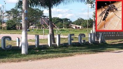 Jujuy: el brote de dengue se extiende en Calilegua