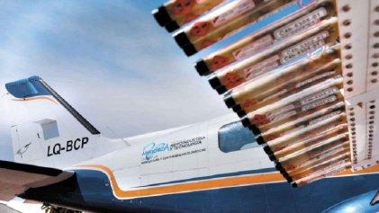 Mendoza: pilotos antigranizo reclaman contra fraude laboral
