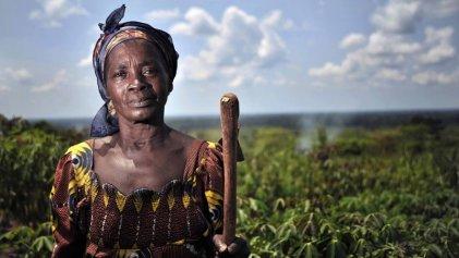 Según estudio, el 70 % de la población mundial come de la mano de la agricultura campesina